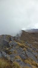 Foggy Misty Afternoon - Mt Albert Edward