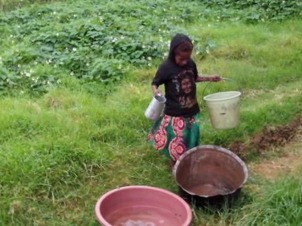 Clean Water - Scarce - Kerau