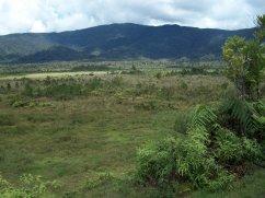 From Paimuru - Looking Towards Tanipai