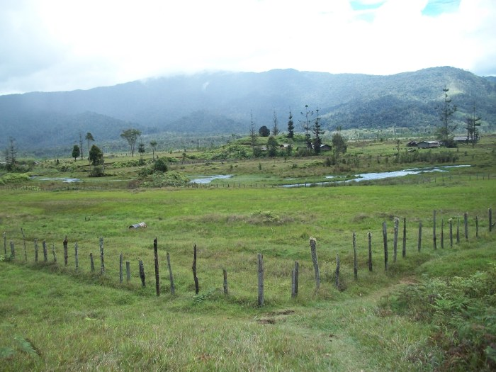 One of the hard hit places in Goilala due to its proximity to the foot of Mt Albert Edward.