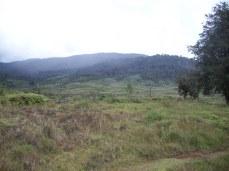 Kosipe Plains - Kosipe