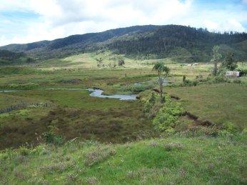From Paimuru Looking toward Kosipe Com School