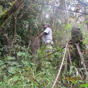 Between TGM and Ononge - Walks