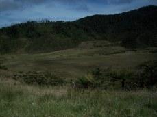 Prestine Vegetation at the Boarder of Kosipe and Sopu - Goilala (93)