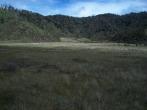 Prestine Vegetation at the Boarder of Kosipe and Sopu - Goilala (96)