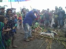 Willie Lausa Meletong Given the Honors to kill a pig - Customary Ritual to welcome a visitor home