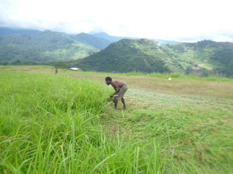 Young man cuts grass at Fane Airstrip