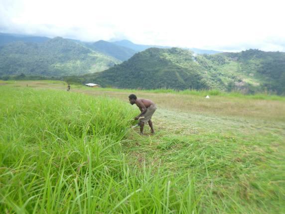 Young man cuts grass at Fane Airstrip