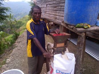 coffee-production-in-goilala-bruce-mamando-1