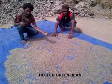 Hulled Green Beans - Fane