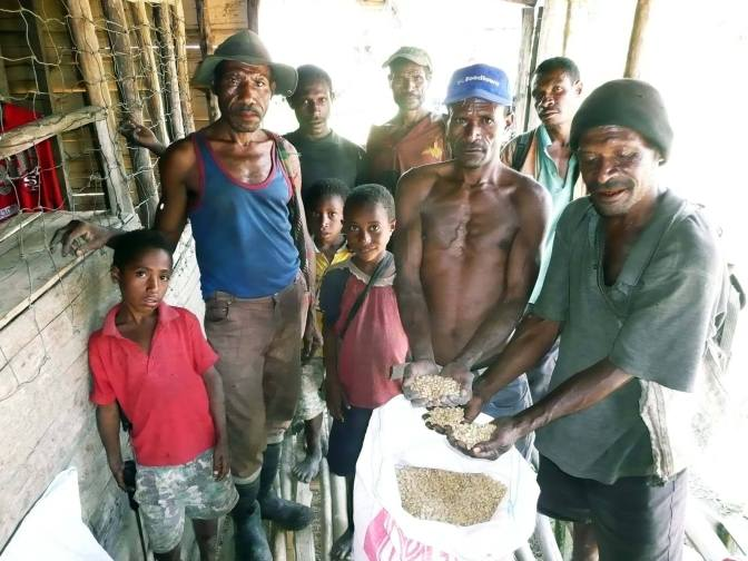 GREEN GOLD IN GOILALA – BRUCE MAMANDO's STORY IN PICTURES
