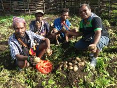 Member for Goilala with the Farmers after sample harvest at Kambisea