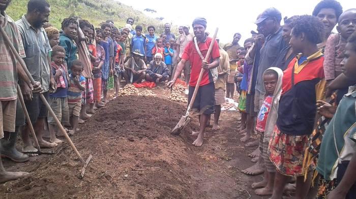 Potato Farming Enters Sopu - Joel Neva (2)