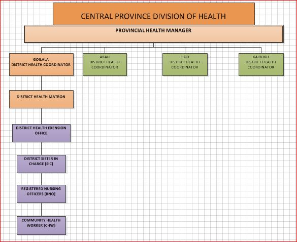 Health Division Organizational Chart - Central Province